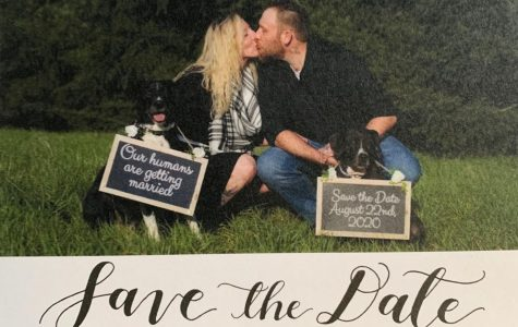 Tara Pelton and Bryan Belzer pose with their dogs on their save the date cards.
