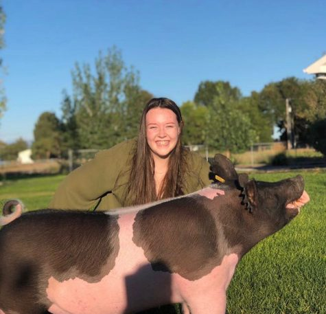Allison Morrison smiles with her 9 month old Hamshire influenced hog named Gunther. She has shown this hog for her FFA class.