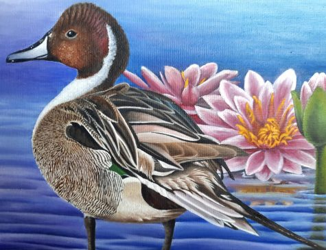 Displayed in the picture is the duck stamp winning painting by Brianna Evelo.