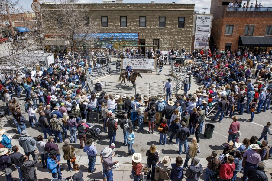 Individuals gather around the sale pen at the Best of the Rockies Cody Horse Sale in 2019. The sale occurs on the street in front of the historic Irma Hotel in Cody each year. This year will be the 23rd rendition of the sale.