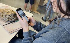 PHS sophomore Jordyn Deercorn demonstrates being on her cellphone during class.